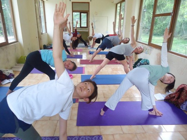 71 Days 500hr YTT in Dharamsala, India