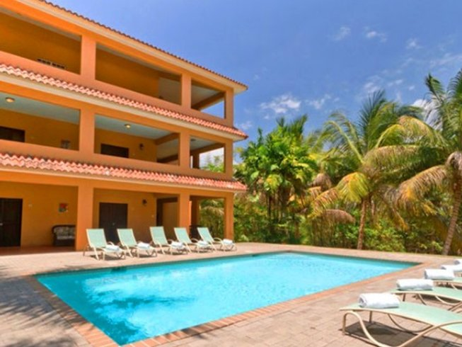 5 Days Exhilarating Surf Camp in Rincon, Puerto Rico