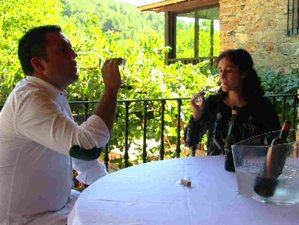 4 Day in 5 Star Luxury Hotel and Private Culinary Vacation in Ribera Del Duero
