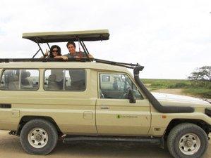3 Days Interactive Masai Mara Safari in Kenya