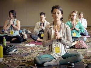 2 Days Transformation Mini Retreat with Yoga Breathwork in Amsterdam