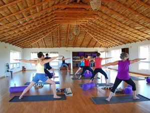 8 Days Light Up Your Life Yoga Retreat in Mexico