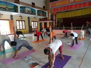 30 Days Multi Style Hatha, Ashtanga, Vinyasa, and Kundalini Yoga Teacher Training in Kerala, India