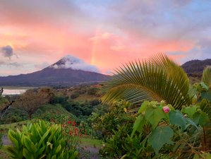 10 Day Costa Rican Naturopathic Detox Retreat with Yoga in the Magical Arenal Rainforest