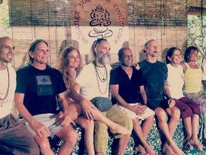 8 Days Ashtanga Yoga Retreat For Life with David Williams in Isla Mujeres, Mexico