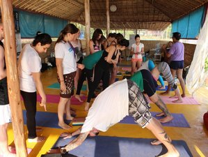 26 Days 200-Hour Luxury Yoga Teacher Training in Goa, India