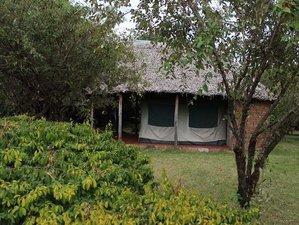 12 Days Group Joining Maasai Mara/L. Nakuru/Amboseli/Tanganyire/Ngorongoro/Serengeti/L.Manyara