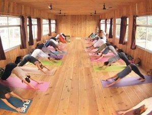 42 Days 200-Hour Yoga Teacher Training in Rishikesh, India