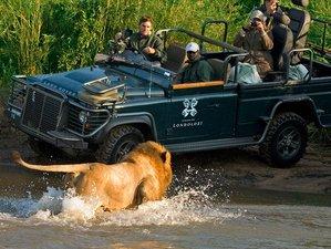 7 Days Luxury Honeymoon Safari South Africa