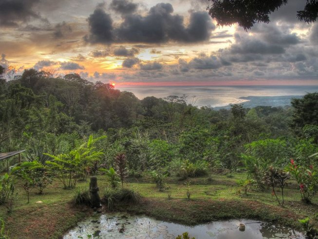 7 Days Jungle Discovery Meditation and Yoga Retreat in Puntarenas, Costa Rica