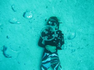 6 Days Free Dive and Yoga Holiday in Tulum, Mexico