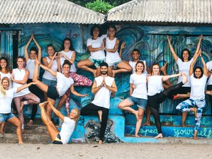 21 Days 200-Hour Hatha Vinyasa Yoga Teacher Training in Bali, Indonesia
