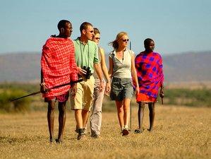 3 Days Masai Mara Luxury Camping and Flying Safari in Kenya
