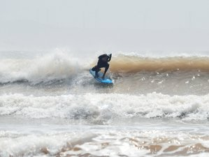 2 Days All Level Surf Camp in Essaouira, Morocco