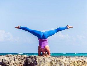 8 jours en stage de yoga et SUP au paradis à Aruba