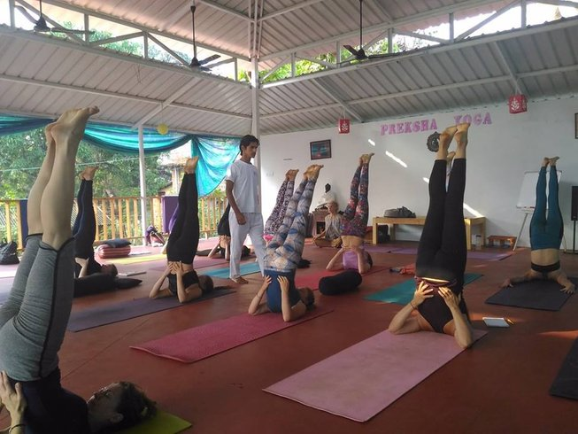 7 Days Rejuvenation, Meditation, and Yoga Retreat Goa, India