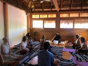 22 Day 200-Hour Intensive Transformation Yoga Teacher Training Course in Magical Sayulita, Nayarit