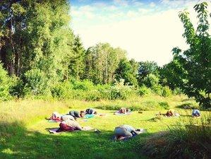 5-Daagse Ojasa Yoga Retreat in de Vlaamse Natuur in Retie, Antwerpen