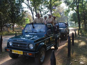 4 Day Fascinating Tadoba National Park Safari in Maharashtra