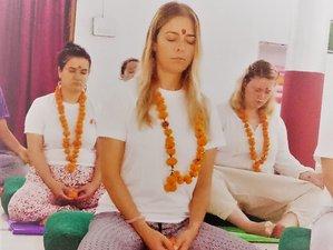8 Tage 50-Stunden Yoga Alliance Meditationslehrer Ausbildung in Rishikesh, Indien