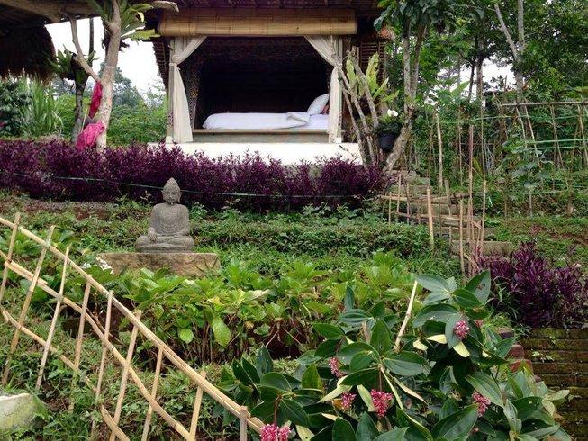 4 Days Nutritious Life Detox, Meditation, and Yoga Retreat in Tabanan, Bali