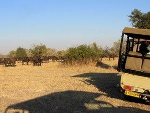 7 Days Nature and Culture Safari in Livingstone, Zambia