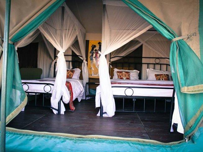 6 Days Standard Safari in Tanzania