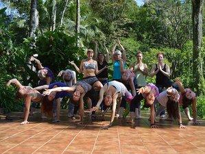 20 Days 200-Hour Yoga Teacher Training in Costa Rica