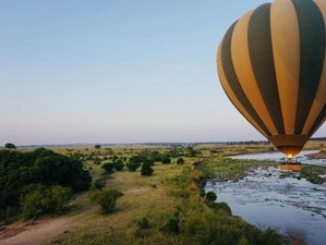 7 Days Best of Tanzania: Manyara, Serengeti, and Ngorongoro Mid-range Safari