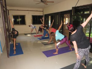 3 Days Journey to the Soul Yoga Retreat in Surat Thani, Thailand