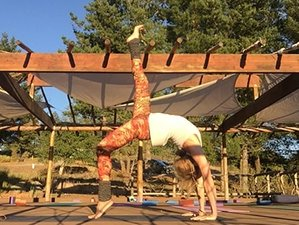 3 Days Women Weekend Yoga Retreat in Wilbur Hot Springs, California
