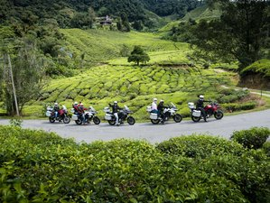 12 Day Northern Circle Guided Motorcycle Tour in Malaysia