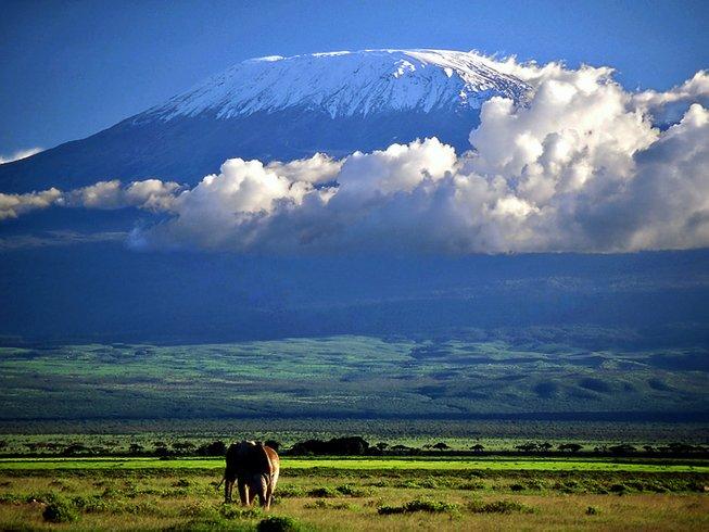 4 Days Shadow of Kilimanjaro Safaris in Kenya