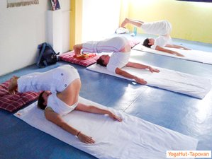 6 Weeks Yoga Teacher Training Course in Rishikesh