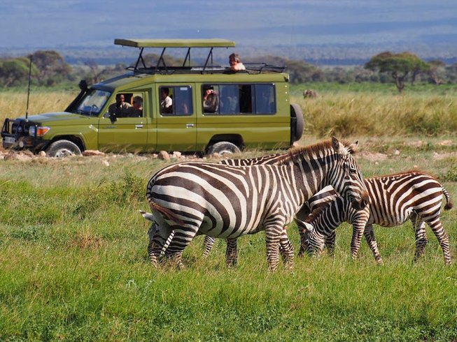 8 Days Kenya Wildlife Safari