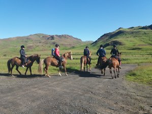 3 Day Mountain Trail Riding Holiday in Ölfus, Reykjavík