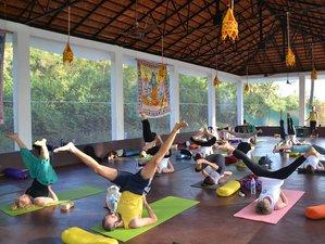 28 Day 300hr Advanced Yoga Teacher Training in Goa