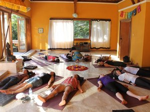 7 Days New Year Revolution and Yoga Retreat in Bali
