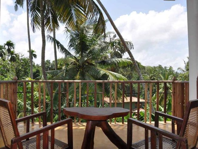 8 Days Yoga and Surf Camp in Southern Province, Sri Lanka