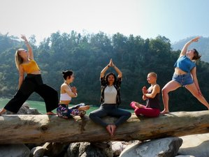 28 Day 200-Hours Vinyasa flow Yoga Teacher Training in Rishikesh