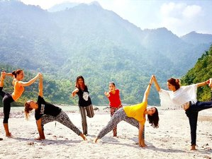 7 Days 50-Hour Yoga Teacher Training, Rishikesh India