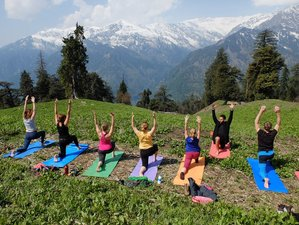 7 Days Manali Meditation and Yoga Retreat in India