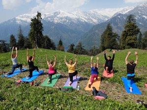 7 jours en stage de yoga et méditation à Manali, Inde