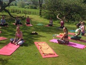3 Days Yoga, Meditation & Detox in East Sussex