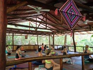 8 Tage Detox, Yoga, und die Lehren von Osho Retreat, Nosara, Costa Rica