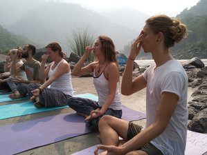 26 Days 200-Hour Traditional Yoga Teacher Training in Rishikesh, India