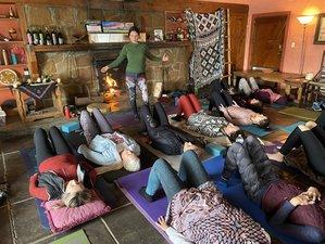 4 Day Online Micro and Macro World of the Pelvic Floor Yoga Training