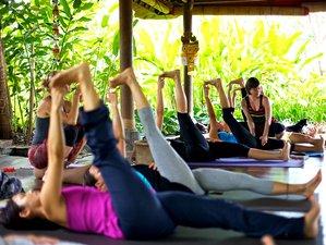 28 jours-200h de formation de professeur de yoga de base à Goa, Inde