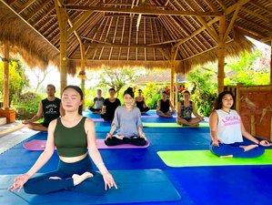 5 Days New Year Kick-starter Positive Transformation Meditation, Yoga & Culture Retreat in Bali