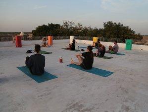 15 Tage Mini-Rundreise nach Pushkar, Jodhpur, zum Taj Mahal und Yoga Retreat im Ashram in Rajasthan